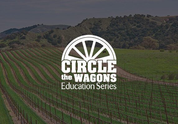 wagon_logo-300x200